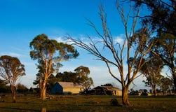 Vreedzame ochtend op het landbouwbedrijf Stock Foto