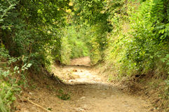 Vreedzame plattelandsweg in de Natuurlijke Reserve van Cheile Nerei Royalty-vrije Stock Foto's