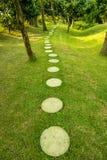 Vreedzame weg in een groen park Stock Foto
