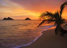 Vreedzame zonsopgang bij strand Lanikai in Hawaï Royalty-vrije Stock Afbeelding