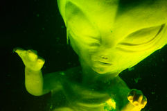 Vreemd Foetus Stock Afbeelding