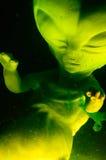 Vreemd Foetus Royalty-vrije Stock Afbeeldingen