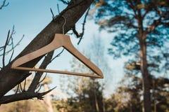 Vreemde dingen in Letse bossen Stock Foto's