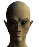 Vreemde Invaller 2 met het knippen van masker stock illustratie