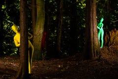 Vreemde kleurrijke mensen in het bos Royalty-vrije Stock Afbeeldingen