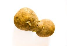 Vreemde Potatoe stock afbeeldingen