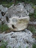 Vreemde steen Royalty-vrije Stock Afbeelding