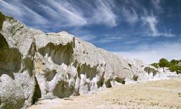 Vreemde stenen en bomen Stock Foto's