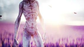 Vreemdeling met vlinders op lavendelgebied concept UFO Realistische 4K animatie stock video