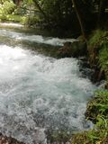 Vrelo Bosne. River Bosna Spring stock images