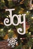Vreugde en het Ornament van de Sneeuwvlok Royalty-vrije Stock Afbeelding