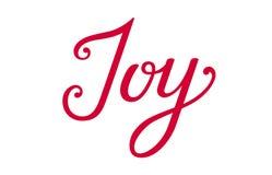 Vreugde het van letters voorzien Kerstmisvreugde Geïsoleerde vreugdeuitdrukking stock foto's