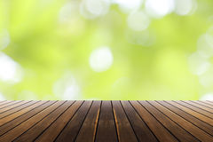 Vårgräsplan och bokehsolljusbakgrund Royaltyfria Foton