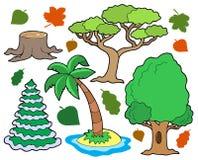 Vária coleção 1 das árvores Fotos de Stock Royalty Free
