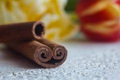 Vriden närbild för kanelbruna pinnar på en vit tabellbakgrund smaktillsats och blommor stänger sig upp kopiera avst?nd krydda fotografering för bildbyråer