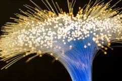 Vriden packe av optiska fibrer som överför elektriskt ljus arkivbild