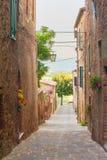 Vridna medeltida gator med färgrika blommor i Tuscany Royaltyfria Bilder
