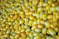 Vriendelijkere eierenverrassingen Stock Fotografie