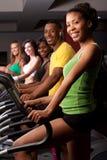 Vrienden bij de gymnastiek Stock Foto