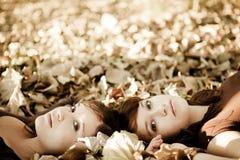 Vrienden in de herfst Stock Afbeeldingen