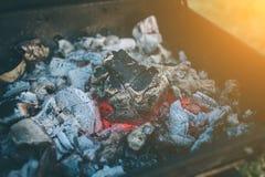 Vrienden die barbecue maken en lunch in de aard hebben Paar die pret hebben terwijl het eten en het drinken bij een Gelukkige pic royalty-vrije stock afbeelding