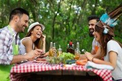 Vrienden die een barbecuepartij in aard hebben terwijl het hebben van pret stock afbeelding