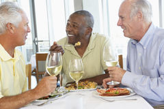 Vrienden die Lunch hebben bij een Restaurant Royalty-vrije Stock Fotografie