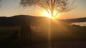 Vrienden die op de zonsondergang letten royalty-vrije stock foto's