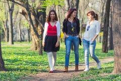 Vrienden die pret in een park hebben Stock Fotografie