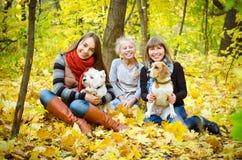 Vrienden met honden stock afbeelding