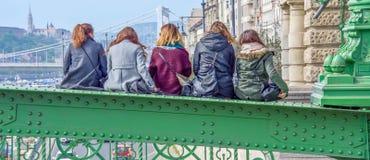 Vrienden over de Donau Stock Afbeeldingen