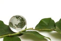 Vriendschappelijke Eco Royalty-vrije Stock Foto's