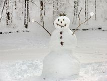Vriendschappelijke Sneeuwman stock afbeeldingen