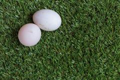 Vriendschapsconcept: twee eieren liggen naast elkaar Royalty-vrije Stock Afbeeldingen