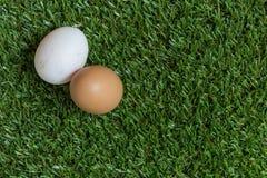 Vriendschapsconcept: twee eieren liggen naast elkaar Royalty-vrije Stock Afbeelding