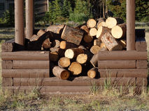 Vrij brandhout op de yukongebieden Royalty-vrije Stock Foto's