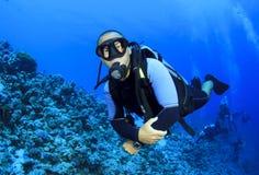 Vrij duiken stock afbeelding