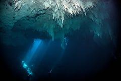 Vrij duiken in cenote de Kuil, Mexico stock fotografie