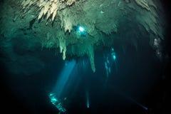 Vrij duiken in cenote de Kuil, Mexico royalty-vrije stock fotografie