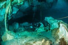 Vrij duiken in Cenote Dos Ojos, Mexico royalty-vrije stock foto