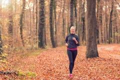 Vrij geschikte jonge vrouwenjogging in bos Royalty-vrije Stock Afbeeldingen