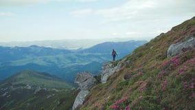 Vrij het jonge vrouw wandelen in de gebloeide hooglanden, komt aan de bergachtige piek, springt op het, en geniet van stock videobeelden