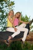 Vrij jonge blonde zitting twee op een boom Royalty-vrije Stock Foto's