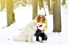 Vrij Jonge Vrouw in de Winter Sneeuwforest park walking met haar Hond stock foto's