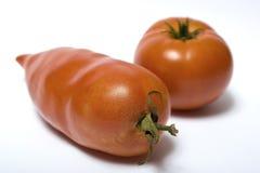 Vrij lange en ronde tomaat Stock Foto's