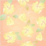 Vrij oranje Bloemen in zomerbloem voor leuke achtergrond Stock Afbeelding