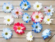 Vrij Rode Witte en Blauwe Patriottische Gekleurde Daisy Flowers Scattered op een Houten Lijstachtergrond Het ` s een horizontale  royalty-vrije stock afbeelding