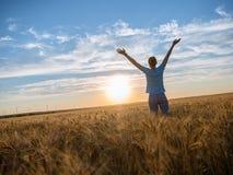 Vrije Gelukkige Vrouw die van Aard en Vrijheid genieten Openlucht Vrouw met wapens uitgestrekt op een tarwegebied in zonsondergan royalty-vrije stock afbeelding