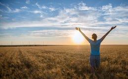 Vrije Gelukkige Vrouw die van Aard en Vrijheid genieten Openlucht Vrouw met wapens uitgestrekt op een tarwegebied in zonsondergan stock foto's