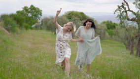Vrijheid twee het houden van en de onbezorgde meisjes lopen samen het houden van handen op weg van gebied in de zomerdag stock video